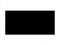 logo-carrefour-123